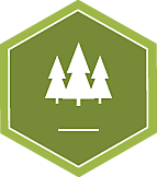 Badge icon 2