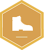 Badge icon 1